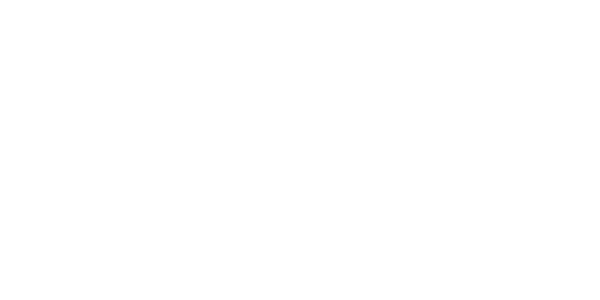 Logo White Label - DJ Boris